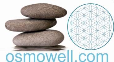 osmowell.com-Logo